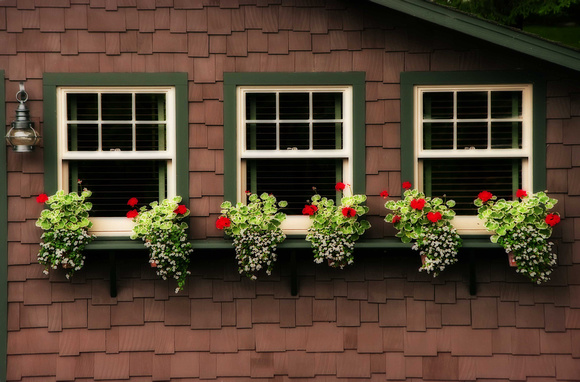 Boathouse Windows